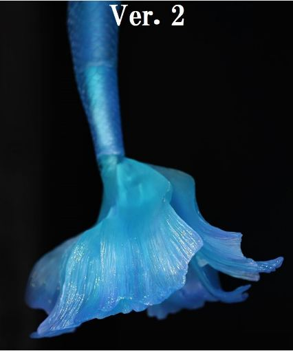 "A thumbnail of ""[Limited Quantity] Mermaid Tail Fin"""